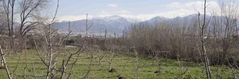 El Cortijo del Pino, Granada